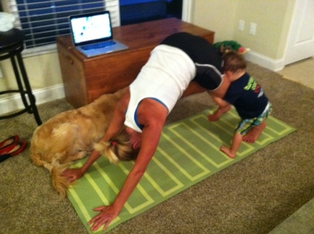 Downward dog - climbing on Gigi